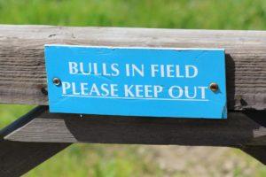 buills